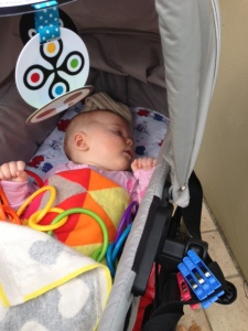 Frankie taking a cheeky pram nap.